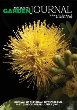 Metrosideros fulgens 'Gold', a yellow-flowered variant of the species. Image: ©Paul Ashford (www.nzplantpics.com).