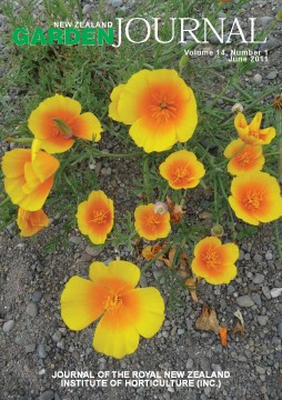 Eschscholzia californica (Californian poppy), a weedy garden escape growing along the Selwyn River, Canterbury. Image: Murray Dawson.