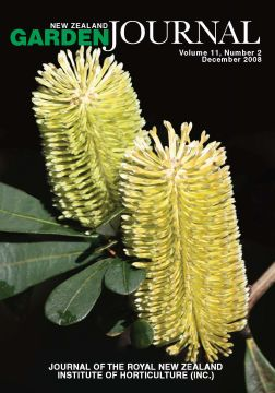 Banksia integrifolia, also known as the coast Banksia, is named after Sir Joseph Banks. Image: Jack Hobbs, Auckland Botanic Gardens.