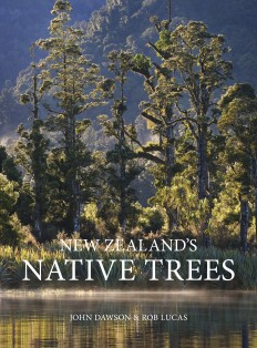 NZs Native Trees