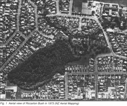 Fig. 1 Aerial view of Riccarton Bush