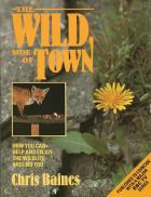 The Wild Side of Town