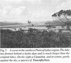 Fig. 3 - A scene in the southern Plain of Lakes region